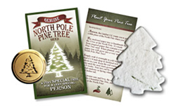 Genuine North Pole Pine Tree Seed<sup>™</sup>