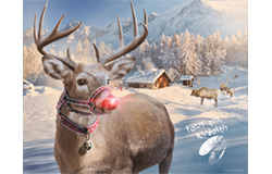 2019Rudolph at North Pole Photo