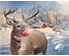 Rudolph Photo at The North Pole